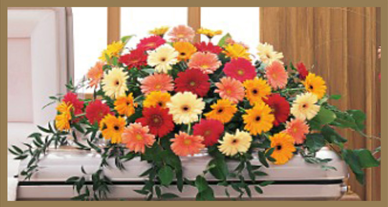 Sympathy Floral Collection FF 2 | Casket Spray 40 Mixed Gerbera Daisy