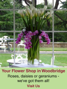Your Flower Shop in Woodbridge | Roses, daisies or geraniums- we've got them all!