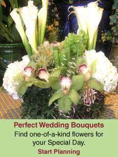 Perfect Wedding Bouquets | Find one-of-a-kind flowers for your Special Day.